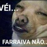 fraga33